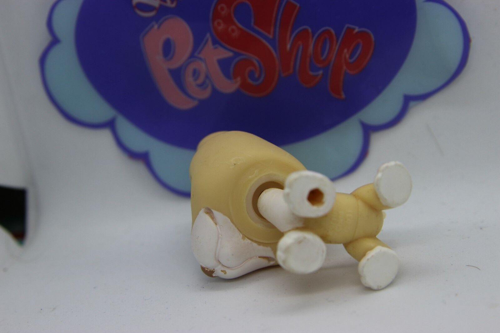 Littlest pet shop authentic # 860 tan white bull terrier purple teardrop eyes