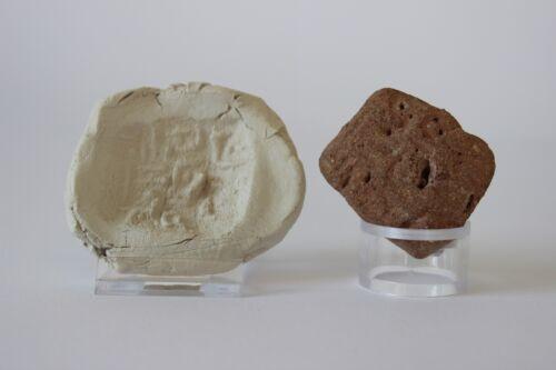 Babylonian Cuneiform Stone Tablet