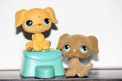 Littlest Pet Shop GOLDEN RETRIEVER DOGS 21 320 FUZZY YELLOW BROWN PUPPY LOT BLU