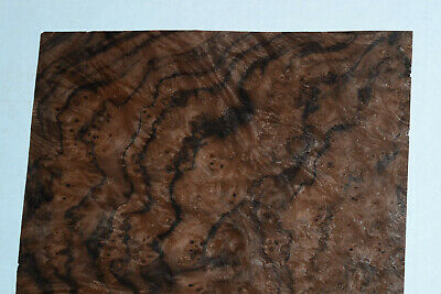 Walnut Burl Raw Wood Veneer Sheets 8 X 18 Inches 142nd Thick  8631-4