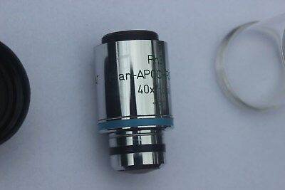 Zeiss Plan Apochromat 40x 1.0 Oil Ph3 Phase Contrast Apo Microscope Objective