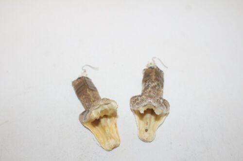 Large Rattlesnake Head earrings     709