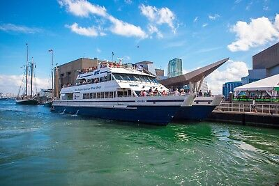 Boston harbor cruises - Boston whale watch tickets - 8 in quantity