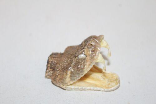 1 Large Rattlesnake head  6609  side winder sidewinder diamondback diamond back