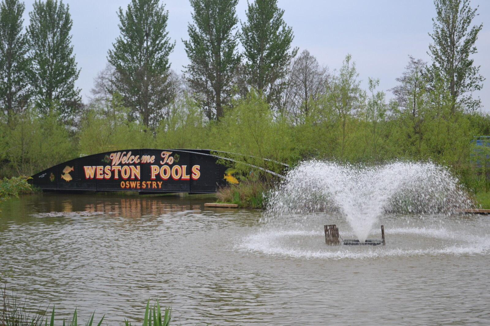 weston pools village