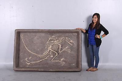 Velociraptor  Dig