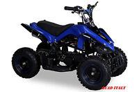 Miniquad Elettrico 50 Cc Mini Quad Moto Bambini Cross Racer Blu Nero Stupendo -  - ebay.it