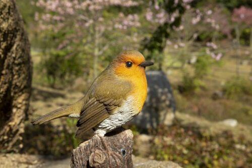 Singing Robin Bird Standing On Stump - Motion Activated Singing Figurine