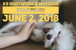 Canine Bodywork & Massage Sessions June 2