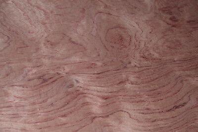 Bubinga Raw Wood Veneer Sheets 23 X 40 Inches African Rosewood  4710-29
