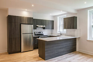 renovated 4 1/2 apartment - Shaughnessy Village - near Concordia