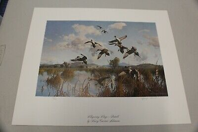 "Harry Curieux Adamson Duck Print, ""Whispering Wings-Pintails"", Mint"