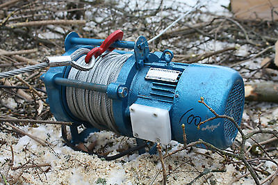 elektrische Forstwinde Rückewinde Seilwinde mit 6 mm 100 m Seil Brennholz