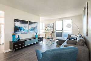 Spacious One Bedroom for August- Stirling Ave, Kitchener