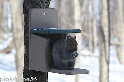 BIRDS CHOICE SQUIRREL FEEDER MUNCH BOX - RECYCLED POLY-LUMBER - MADE IN USA!!