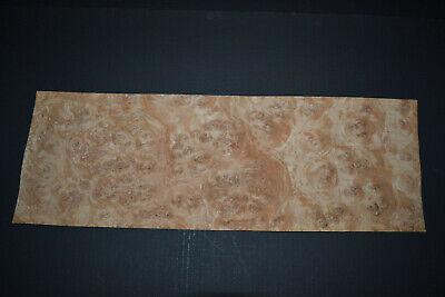 Oak Burl Raw Wood Veneer Sheets 6.5 X 21 Inches 142nd 4704-1