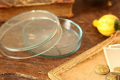 Large Glass Petri Dish Vintage Lab Glass Lab Jar Microbiological Glassware