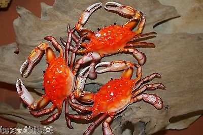 "(9) PCS, 6"", SEAFOOD, STEAMED CRABS, OCEAN DECOR, FISH DECOR, SHELLFISH DECOR"