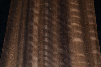 Fumed Eucalyptus Raw Wood Veneer 5 X 42 Inches   E7318-2