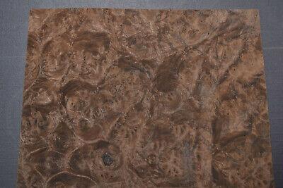 Walnut Burl Raw Wood Veneer Sheet 8.75 X 10.5 Inches 142nd Thick  7727-23
