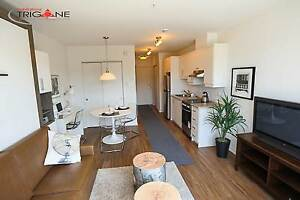 NEW STUDIOS FOR RENT - FURNISHED-NDG-CDN