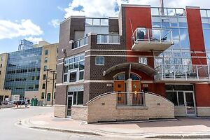 Gorgeous 2 Bedroom Waterfront Condo - 230 Waterfront