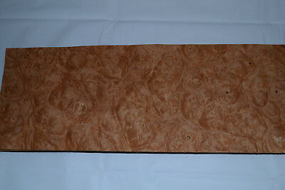 Chestnut Burl Raw Wood Veneer Sheets 6 X 17 Inches 142nd Thick  E4712-46
