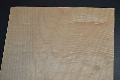 Curly Maple Raw Wood Veneer Sheets 12 X 30 Inches 142nd   4712-23