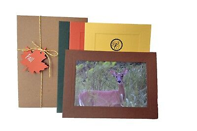Fall Collection - 4x6 Photo Insert Note Cards - 24 Pack by Plymouth - 4x6 Photo Insert Christmas Cards