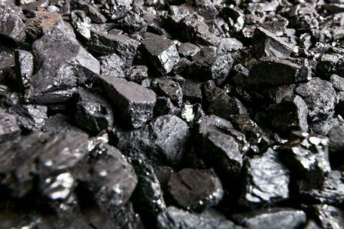 Blacksmithing Coal 25lbs