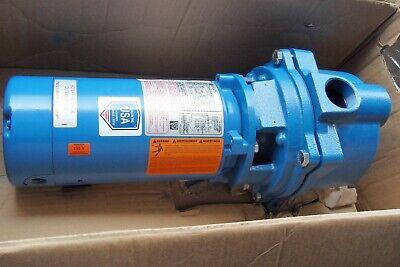 Goulds Water Technology Gt10 Centrifugal Pump1 Hp