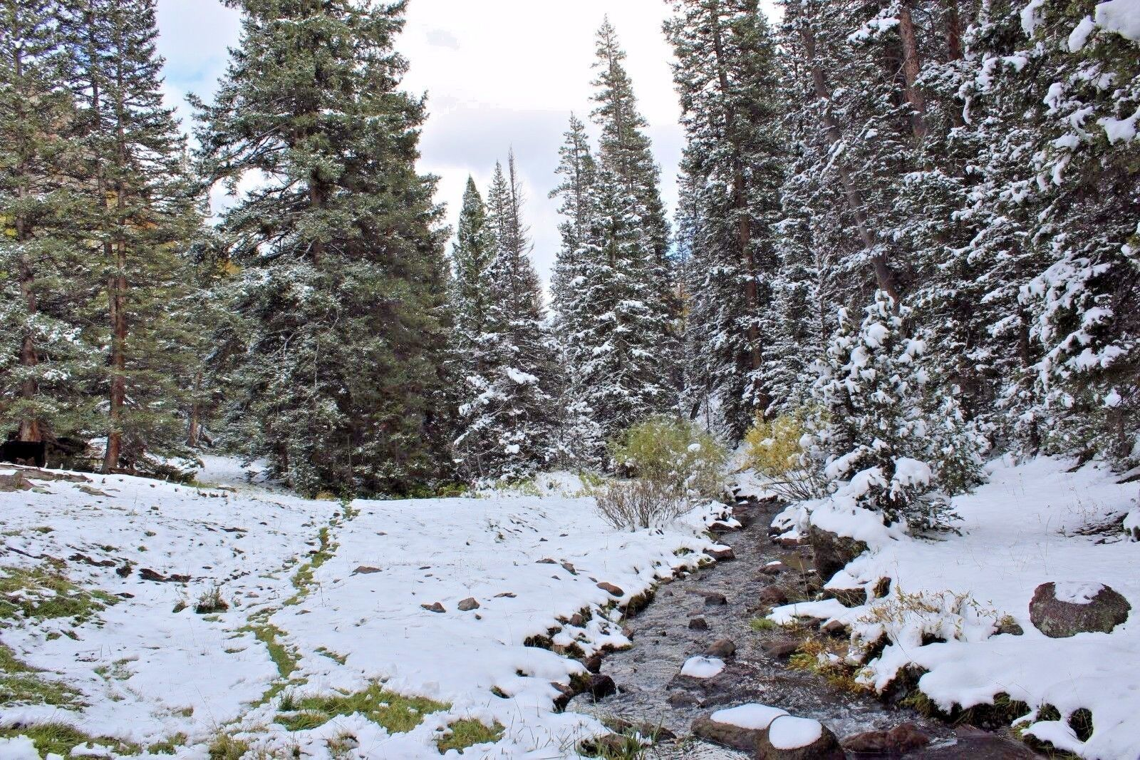 Utah Gold Mining Claim Unpatented Placer Mine - Lousy Jim Creek Beaver UT