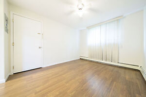 Upgraded, Downtown, One Bedroom Apartment - Available August 1!
