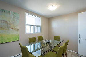 Updated Two Bedroom at Huron/Highbury with a Pool! London Ontario image 8