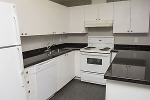 Shared Student Apts in Downtown London - ALL INCLUSIVE + WIFI London Ontario image 6