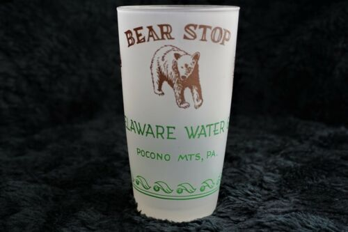 Vintage 1950s, Delaware Water Gap Pocono Mts Pennsylvania Frosted Drinking Glass
