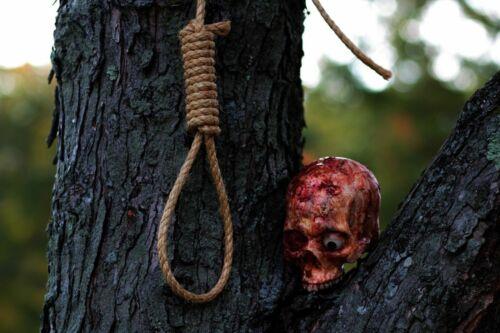 Halloween Horror Hangman Noose Prop.