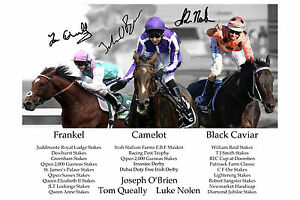 Frankel, Camelot & Black Caviar Signed Autograph Photo Print Horse Racing Derby
