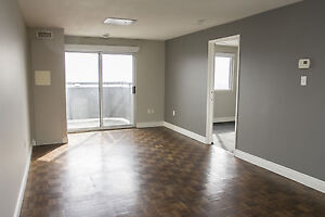 Shared Student Apts in Downtown London - ALL INCLUSIVE + WIFI London Ontario image 1