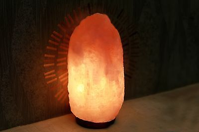 Himalayan Natural Ionic Rock Crystal Salt Night Light Lamp 7 ~11 Lb Air Purifier