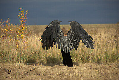 Large waving crow/raven Mardi gras/Maleficent Black wings Cosplay adult Costume