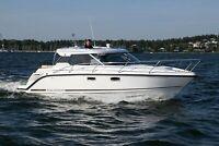 Aquador 28 HT Neuboot kaufen Brandenburg - Werder (Havel) Vorschau