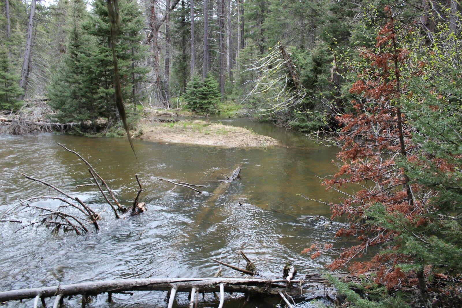 Montana Gold Mine Placer Creek Mining Claim Panning Sluice Highbank Snipe Detect - $402.88