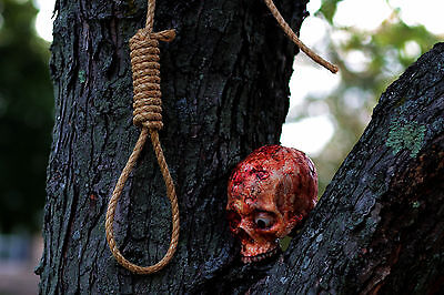 Halloween Horror Movie Hangmans Noose Prop
