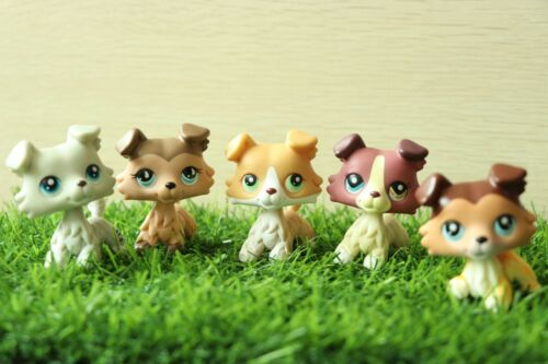 Taylor Pet Shop LPS Collie 58 893 363 1262 272 Figure Toys 5pcs Kid