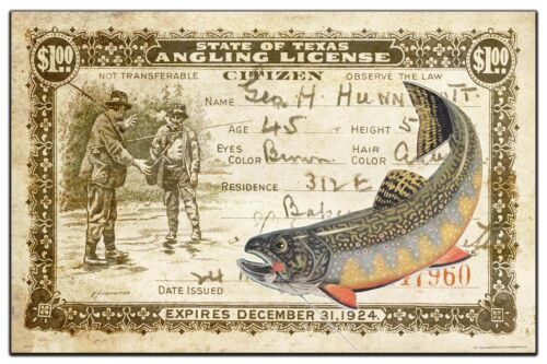 Vintage Texas Brook Trout Fly Fishing License Art Print 11x17 Cabin Wall Decor