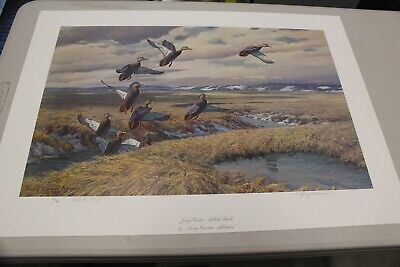 "Harry Curieux Adamson Duck Print, ""Jersey Coast- Black Ducks"", Mint"