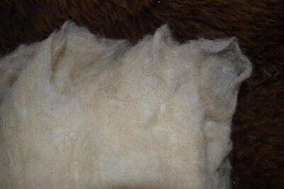 kardierte Wolle in naturbeige als 100g Vlies vom Coburger Fuchsschaf