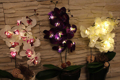Garten,Geschenkidee, Orchidee,Kunstpflanze mit - Garten Beleuchtung Ideen