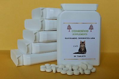 CAT X 30:Glucosamine,Chondroitin,MSM: Happy & Mobile! For Stiff Joints.
